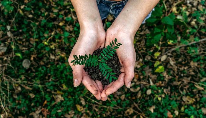 Thinking of sustainability